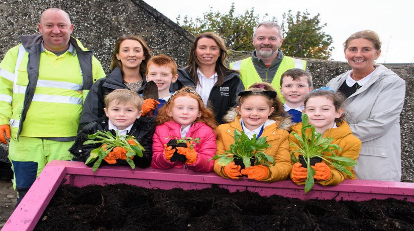 Limavady kids plant a winter display